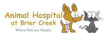 Animal Hospital at Brier Creek